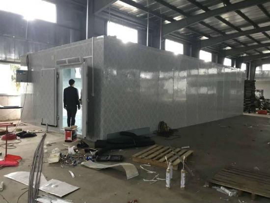 湛江市海生物科技公司冷库安装